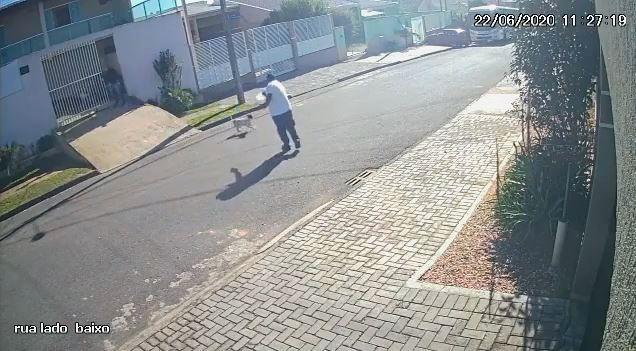 Câmera flagra homem matando cachorro com tiro no Paraná | Agora1